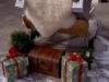 little-sleigh-2
